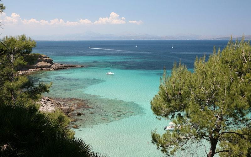 top-five-beaches-in-mallorca-bahia-de-alcudia-daytrip4u