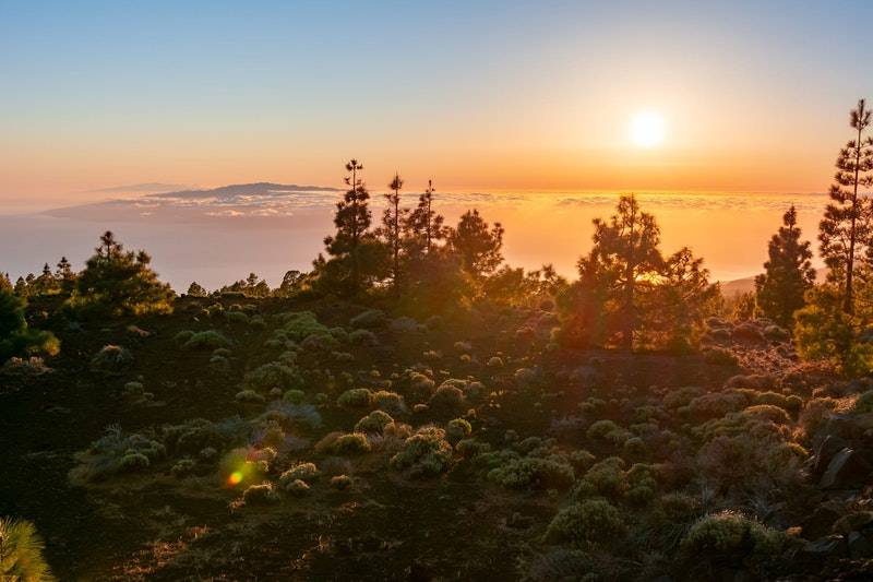 top-five-things-to-do-in-tenerife-teide-national-park-daytrip4u